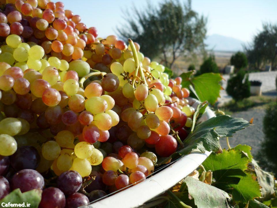 حفظ سلامت قلب با مصرف انگور
