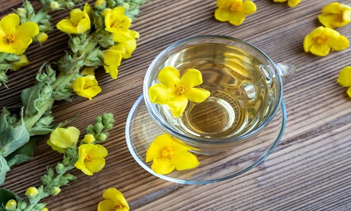 تاثیر چای گل ماهور در تسکین علائم آسم